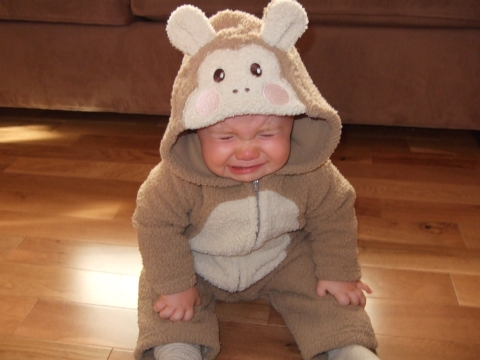 http://benjismith.com/wp-content/uploads/2007/10/crying-monkey.jpg