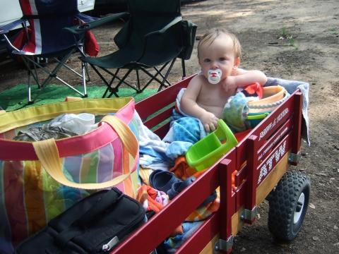 beach-sully-in-wagon