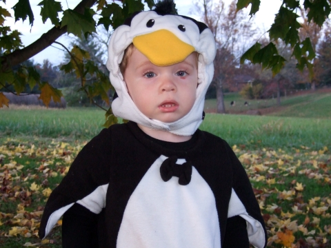 halloween-sawyer-penguin-face